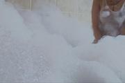 Busty Bathing Beauty Haruka Oosawa Masturbates Photo 6